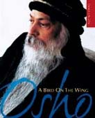 osho zen books download